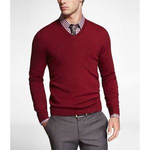Express Italian Merino wool v-neck sweater - Large